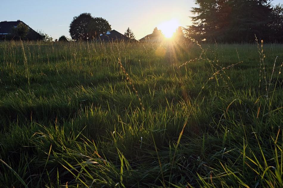 Wanneer is een stuk grond…bouwgrond?